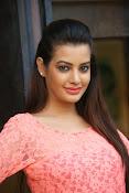 diksha panth sizzling pics-thumbnail-14