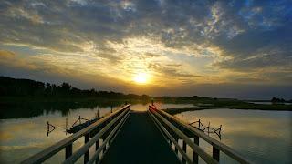 Puente de madera 12