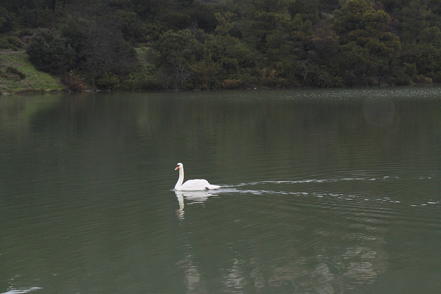Mια μίνι λίμνη Πλαστήρα στην Πάρνηθα!!