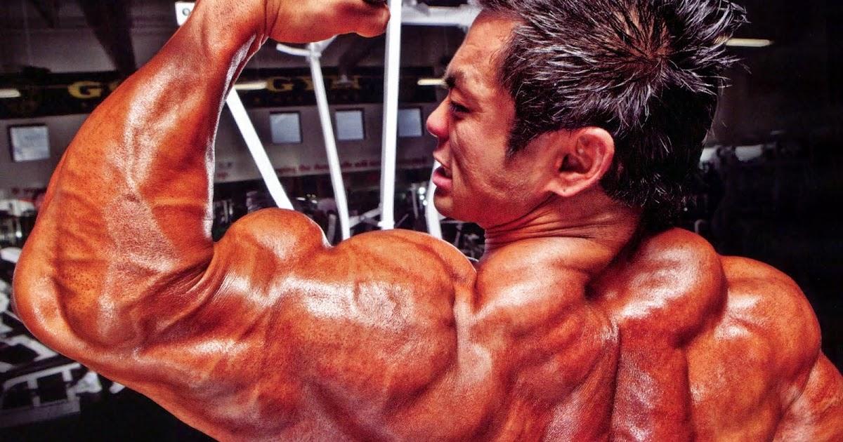 Bodybuilding blog: Superdrol - Pro-Hormone or Steroid?