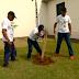 Igrejas de SP realizam plantio de mudas de árvores; assista
