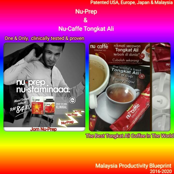 Malaysia Productivity Blueprint