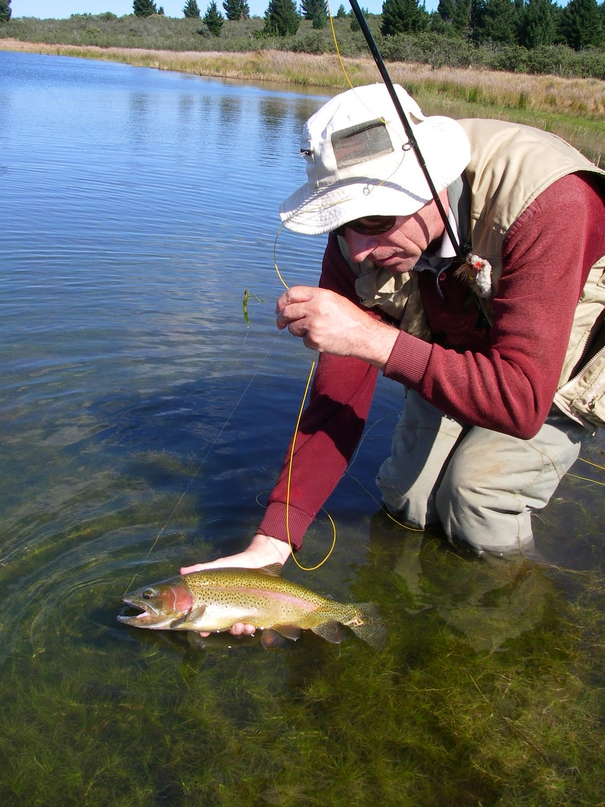 Castle lager east cape biltong festival 2014 fly fishing for Fly fishing competitions