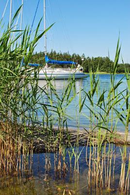 Veneet kaislikon takana