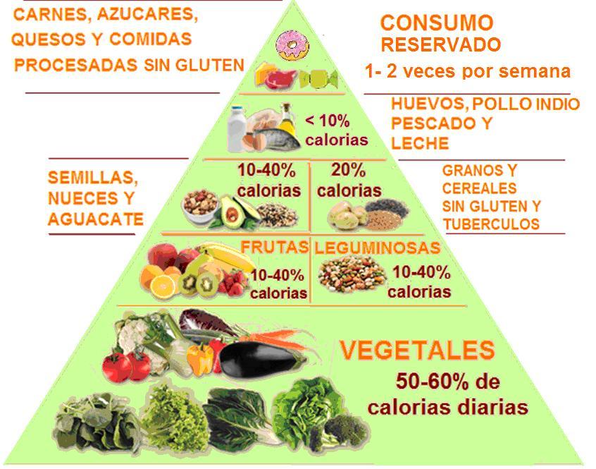 Cel acos y sensibles al gluten de el salvador dieta libre de gluten - Lista alimentos con gluten ...