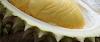 Dahsyatnya Manfaat  Durian Bagi Kesehatan Tubuh