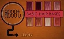 Asset Hair