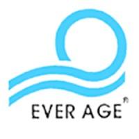 PT Ever Age Valves Metals