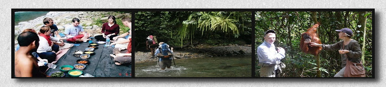 ECO - BUSINESS BUKIT LAWANG - DAY TREK