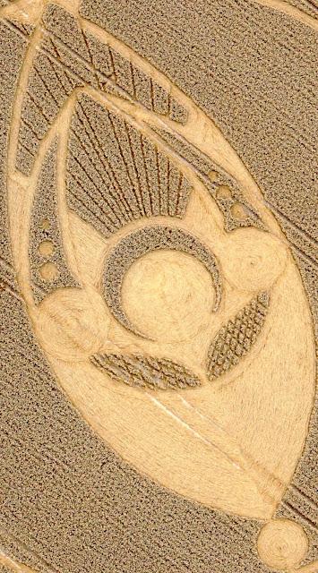 formas de los circulos en los cultivos