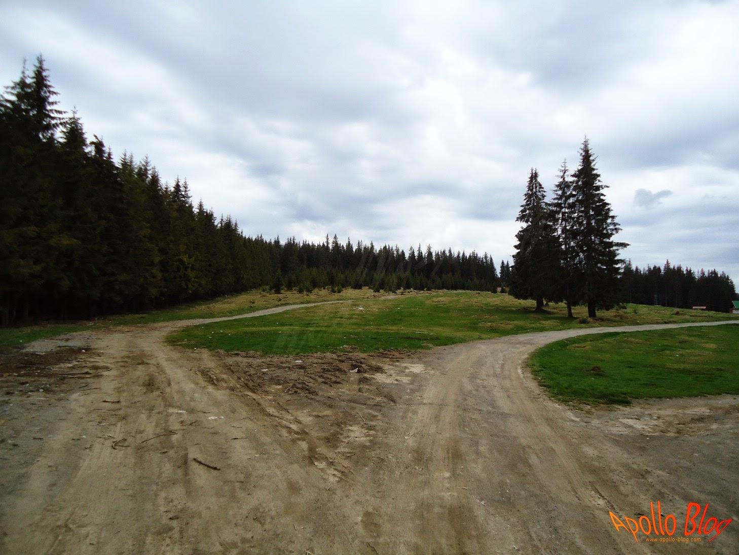 Drumuri Bucin