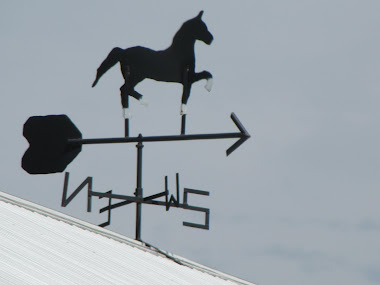 Weather Vane on Top of Barn