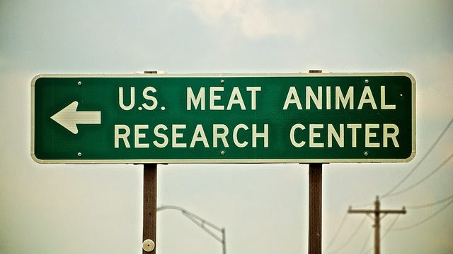 http://www.nytimes.com/2015/01/20/dining/animal-welfare-at-risk-in-experiments-for-meat-industry.html?_r=0