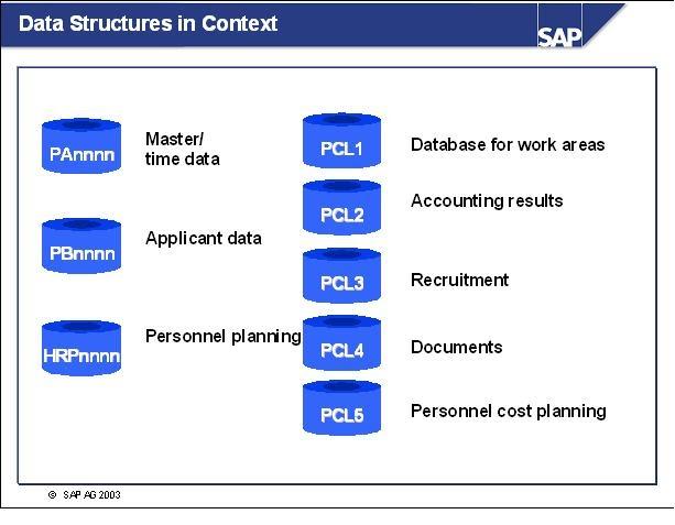 sap hcm personnel administration pdf