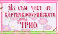 КФП 281 1 декември до 3 януари 2015г.