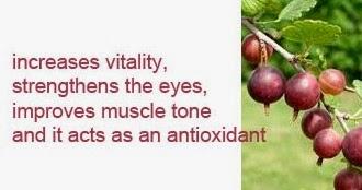 gooseberry health benefits 4