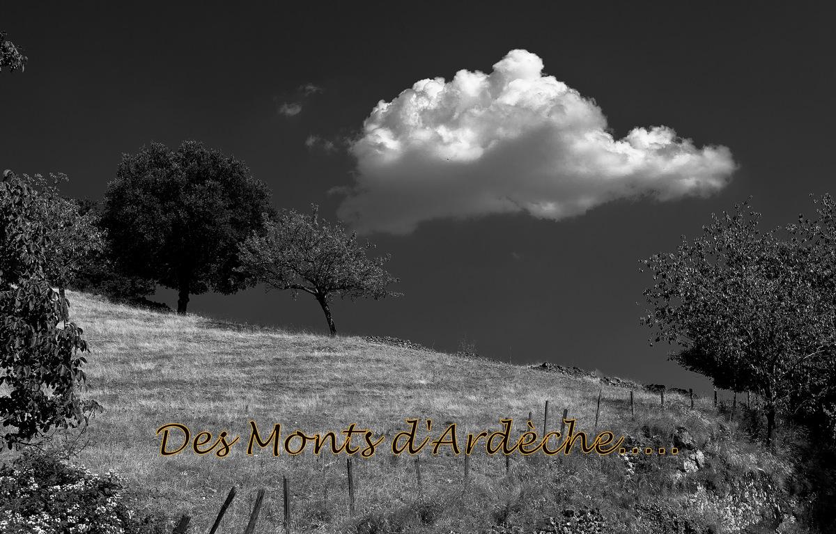 Des monts d'Ardèche.....