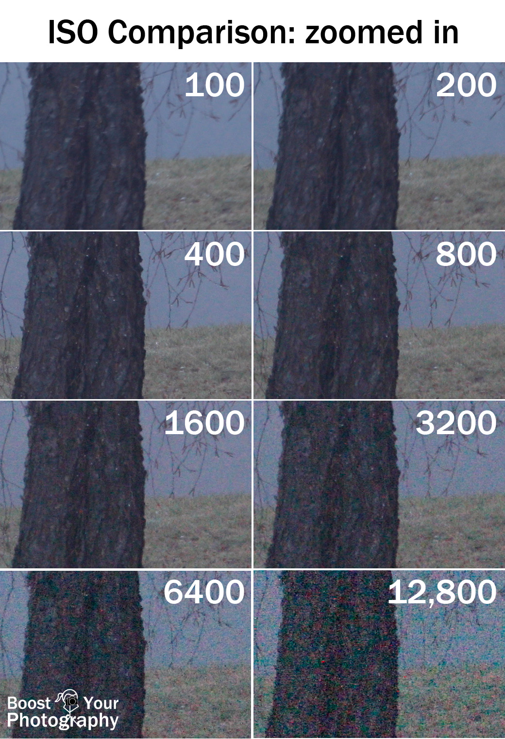 ISO Comparison Zoomed In | Boost Your Photography