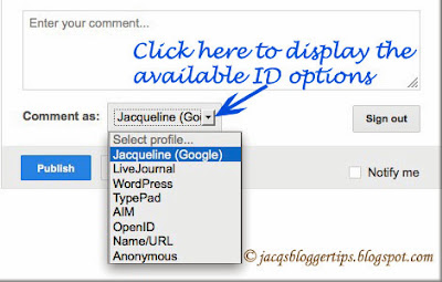 Screenshot showing the Identity Options available when allowing 'Anyone' to comment on your blog