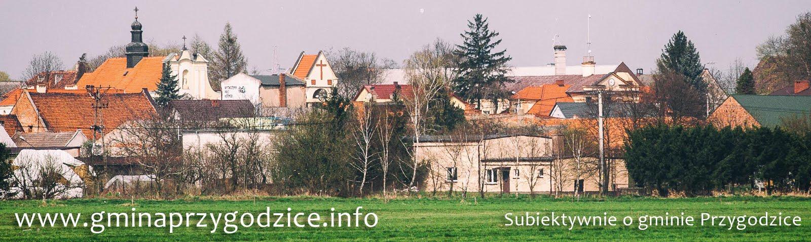 www.gminaprzygodzice.info