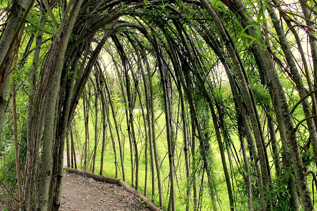 path made from twig arch