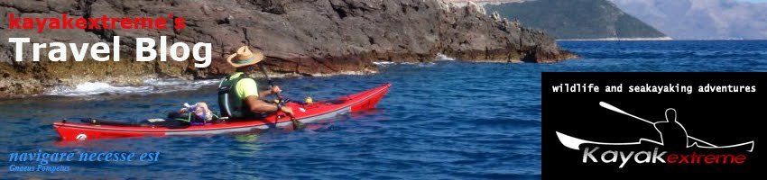kayakextreme's blog