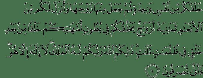 Surat Az-Zumar ayat 6