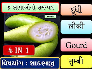 https://purangondaliya.files.wordpress.com/2014/09/24-vegetables-in-4-lang.pdf