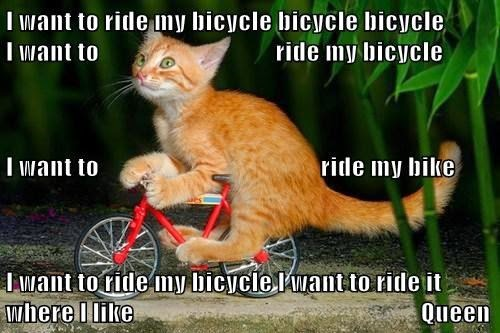 Resultado de imagen para great thursday bike