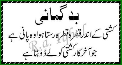beautiful urdu inspirational quotes all about pakistan