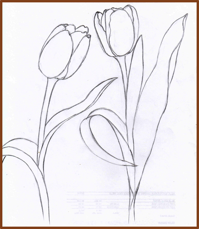 how to draw a tulip method 4