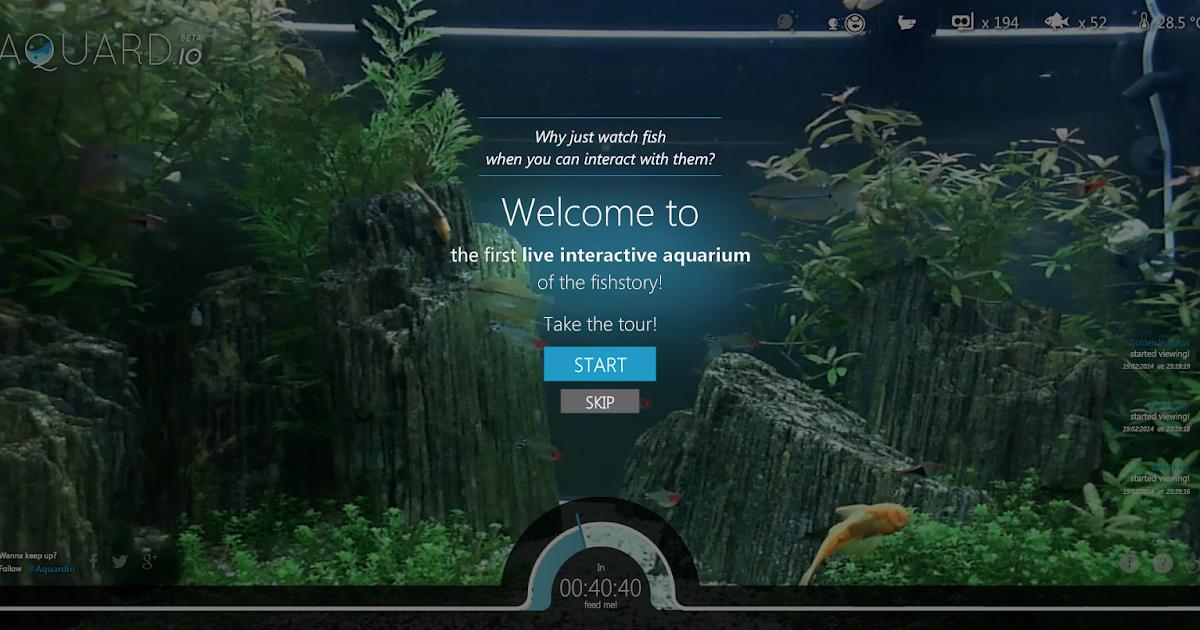 Aquard.io 線上多人互動實境水族箱一起用 Web App 養真魚