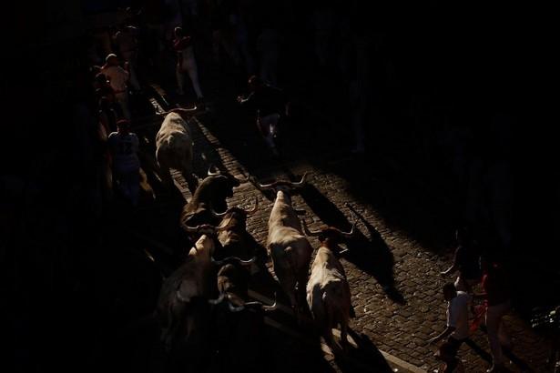 Bull-Running Festival