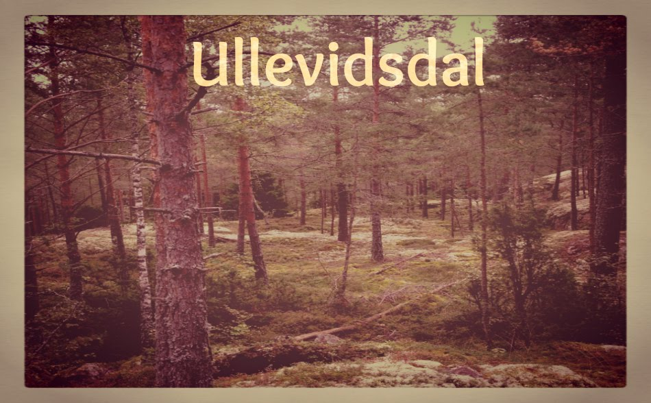   Ullevidsdal