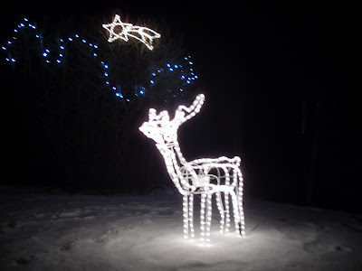 A photograph of a reindeer decoration and star in the garden