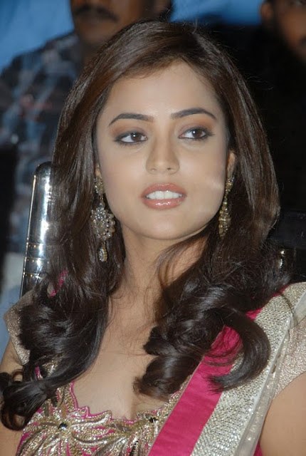 Nisha Agarwal In Pink Churidar