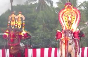 Nallur kanthan's 9th Day Festival