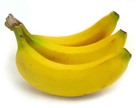 kelapa1
