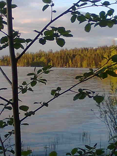 Lake in Lieksa Northern Karelia