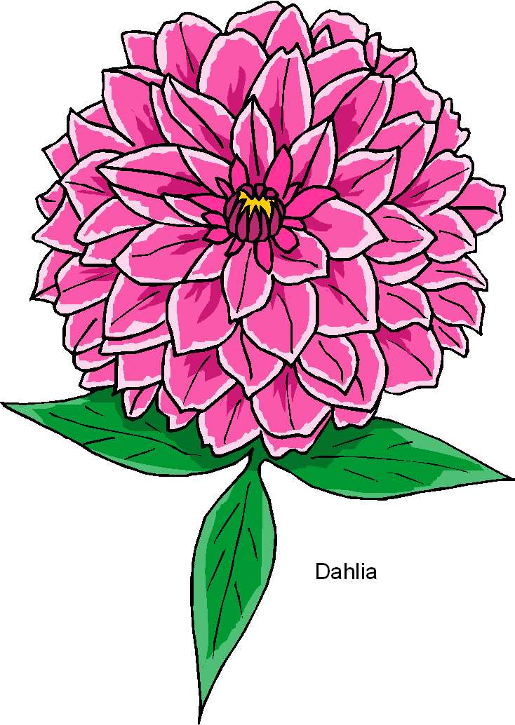 free dahlia clipart clipartmansion com rh clipartmansion com dahlia clipart black and white dahlia clipart black and white