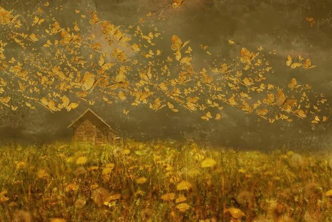 ©Oleg Girel. Fotografia Artistica. Fotografia | Photography