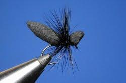 Universal Chub Fly