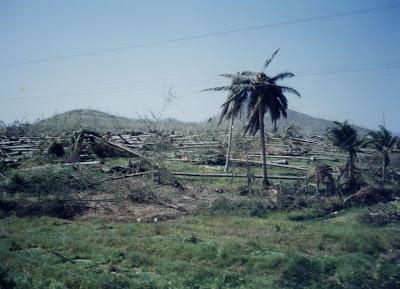 Typhoon damage in Thailand