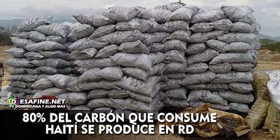 http://www.desafine.net/2015/02/80-porciento--del-carbon-que-consume-haiti-se.html