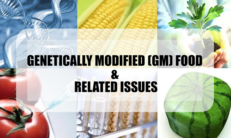 evaluation of genetically modified foods Evaluation of genetically modified foods humans have been modifying their food for thousands of years until the 20th century, this had to be done by breeding desirable characteristics into crops.