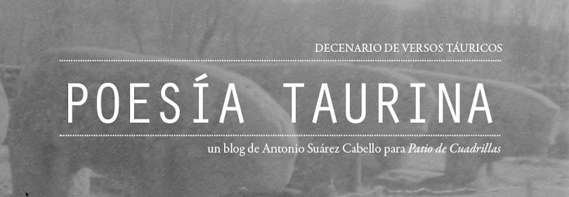 Poesía taurina: decenario de versos táuricos