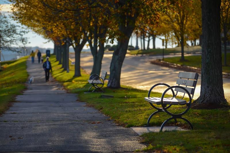 Eastern Promenade photo in Portland, Maine. November 2013. Photo by Corey Templeton.