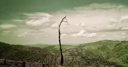 La fotografía documental de Darran Rees
