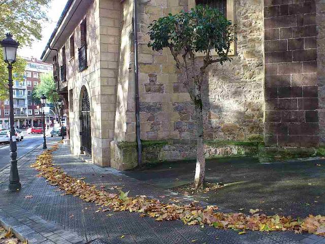 Bilbao,hojas,Deusto,otoño