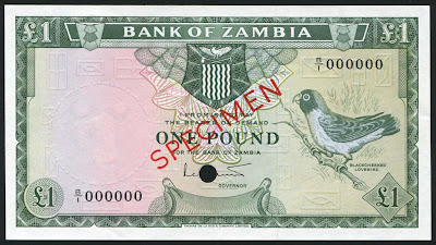 African banknotes Zambian pound currency notes images